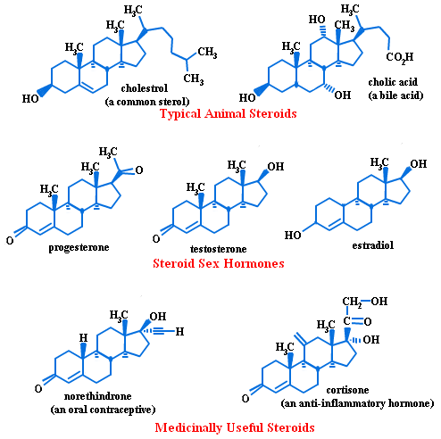 different-forms-of-steroids