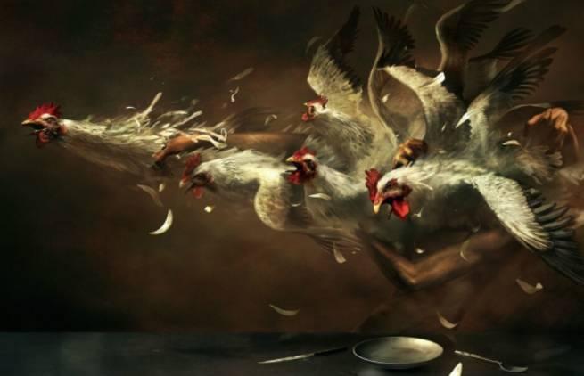 Βίλχεμ Ράιχ - Αϊτός και κότες
